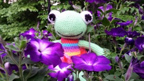 frog amigurumi3