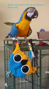 macaw hat 2 watermark