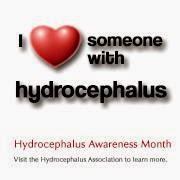 Hydrocephalus, Hydrocephalus love, Hydro